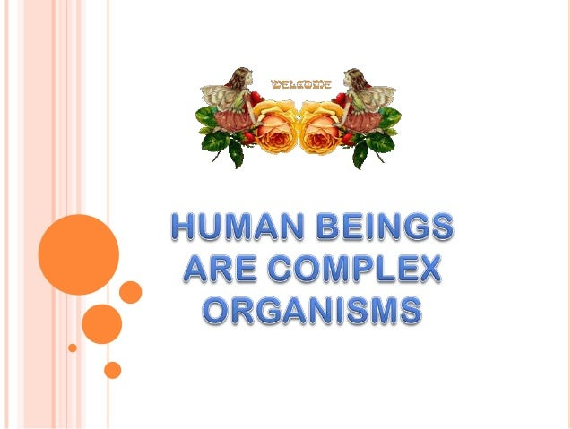 human being complex organism Human body: human body, the physical substance of the human organism.
