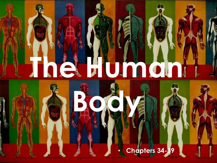 The Human   Body     • Chapters 34-39