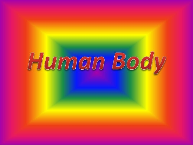 Systems of Human Body• Respiratory System• Nervous System• Skeletal System• Digestive System