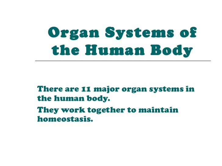 Organ Systems of  the Human BodyThere are 11 major organ systems inthe human body.They work together to maintainhomeostasis.