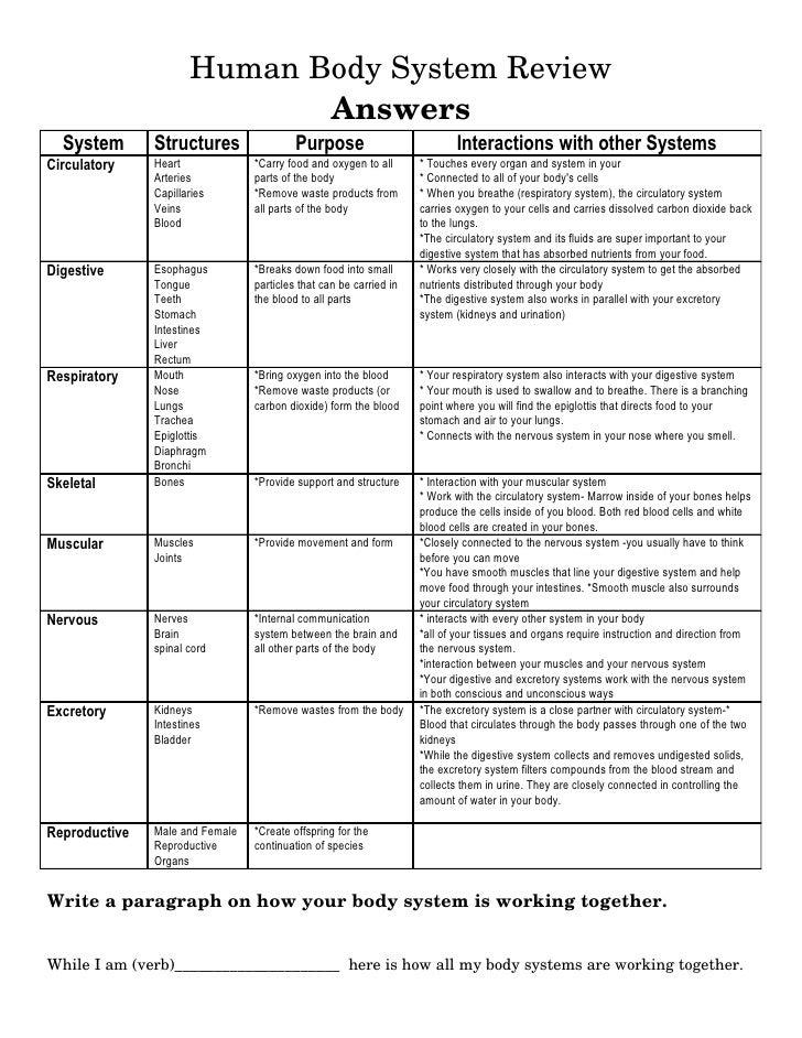 Human Body Systems Chart Key