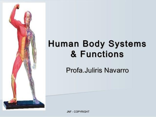 Human Body Systems   & Functions   Profa.Juliris Navarro   JNF - COPYRIGHT