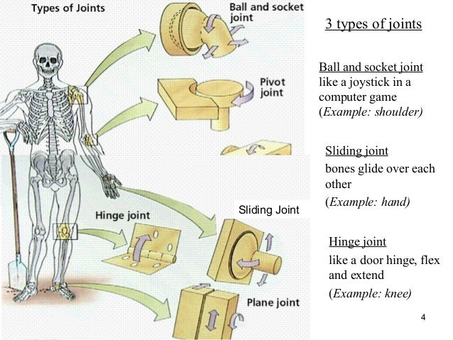 Industrial Ball And Socket Joint Fleetdepositfiles