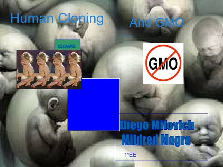 Human Cloning    And GMO      CL NS        OW                1ºEE
