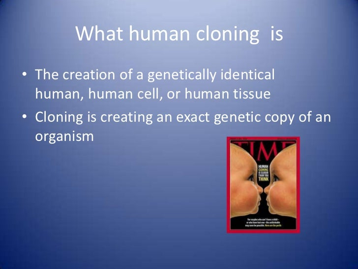 critical essay on human cloning