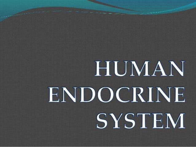 ENDOCRINE SYSTEM Endocrine system helps in the regulation and  coordination of body and body activities . The endocrine ...