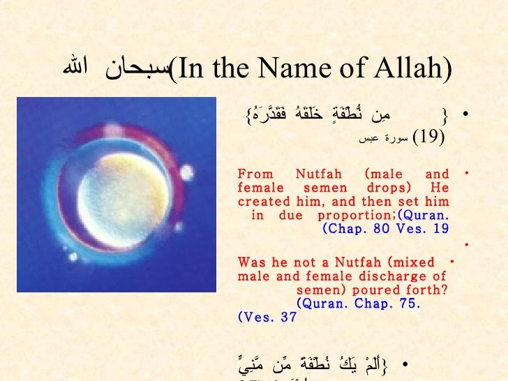 (In the Name of Allah) سبحان الله  <ul><li>{ مِن نُّطْفَةٍ خَلَقَهُ فَقَدَّرَهُ }  (19)  سورة عبس </li></ul><ul><li>From N...
