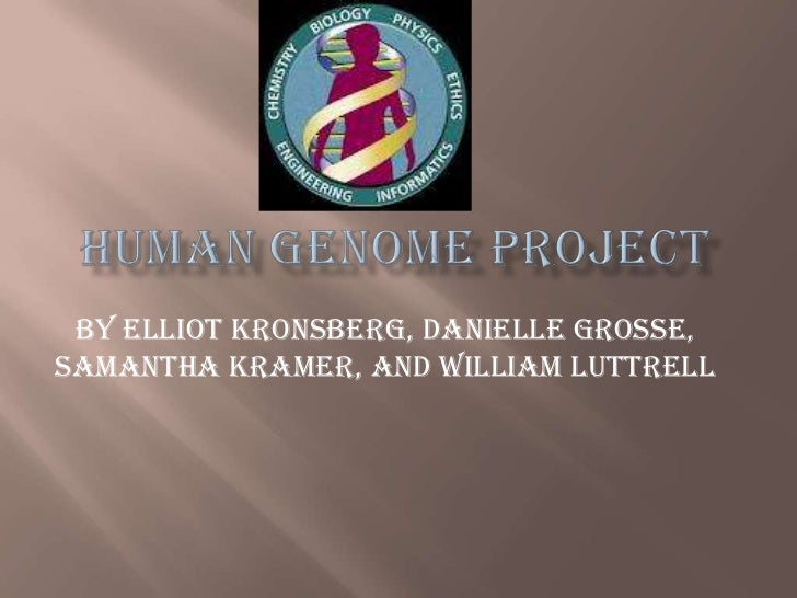 By Elliot Kronsberg, Danielle Grosse,Samantha Kramer, and William Luttrell