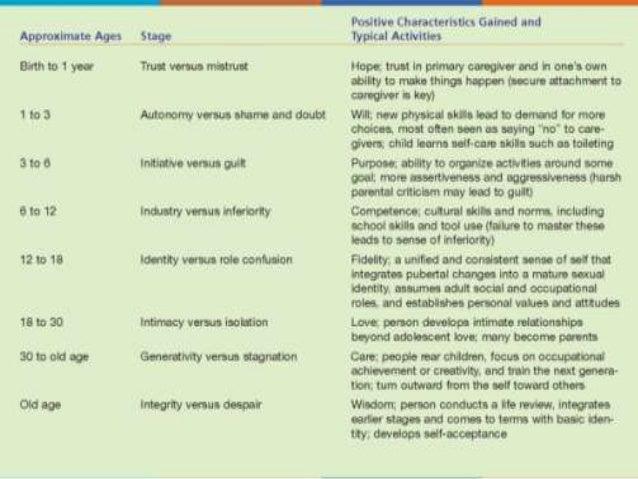 Developmental Psychology Essays