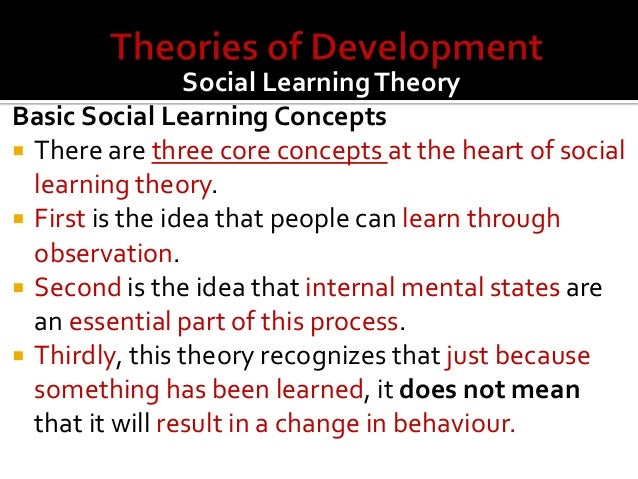 Human Development Theories Essay