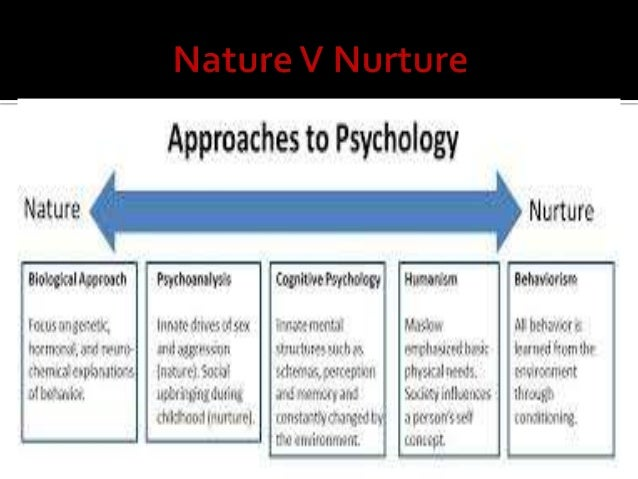 essay on the nature nurture debate Nature vs nurture in psychology by saul mcleod , updated 2017 the nature vs nurture debate within psychology is concerned with the extent to which particular aspects of behavior are a product of either inherited (ie, genetic) or acquired (ie, learned) characteristics.