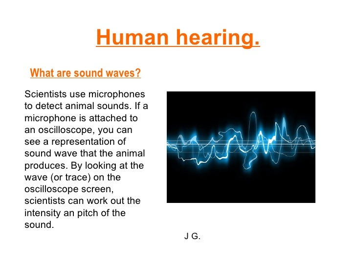 Human hearing. What are sound waves? Scientists use microphones to detect animal sounds. If a microphone is attached to an...