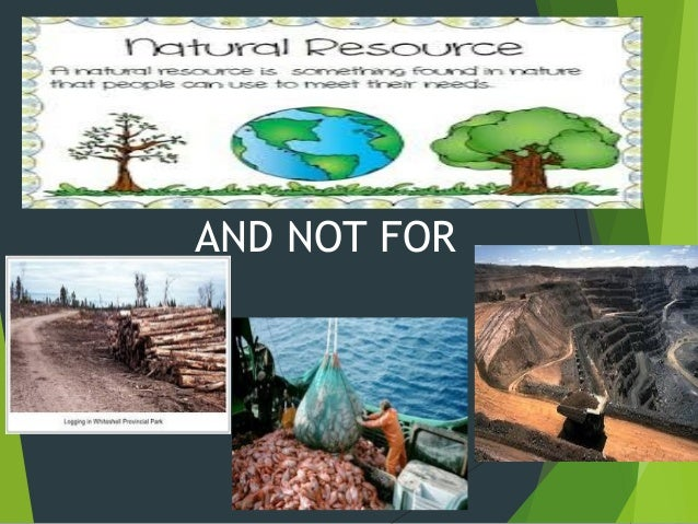essay on human impact on the environment Article shared by: read this essay to learn about the human being, a rational and social partner in environmental action man and environment are inter-related.