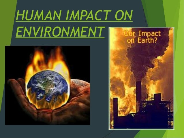 The impact of human activity