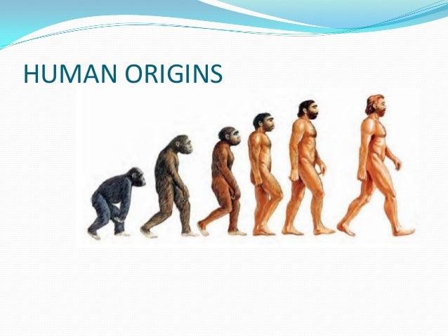 Humanorigins 140309074812-phpapp01.ppt