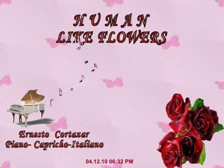 04.12.10   06:31 PM H U M A N LIKE FLOWERS Ernesto  Cortazar Piano- Capricho-Italiano