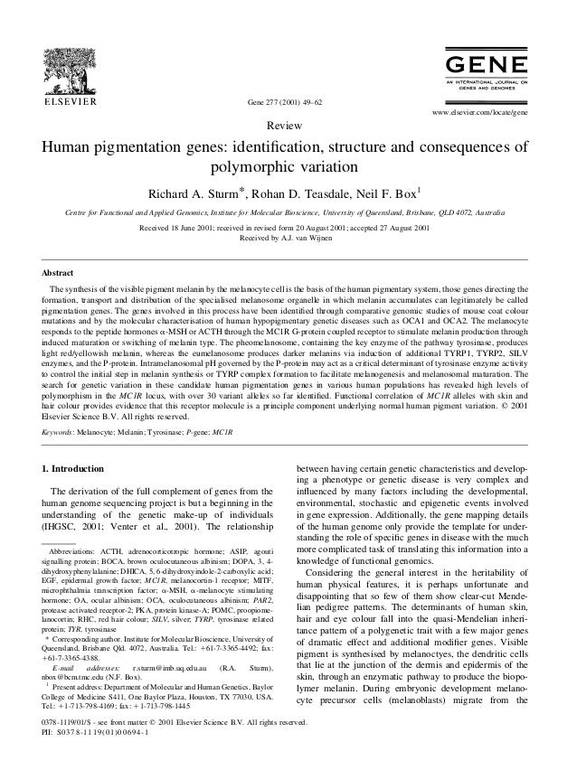Review Human pigmentation genes: identification, structure and consequences of polymorphic variation Richard A. Sturm*, Roh...