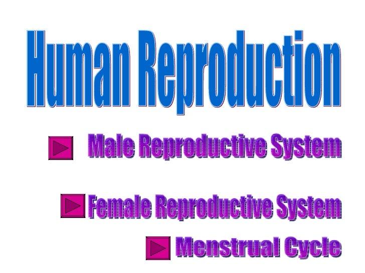 Human reproduction2012