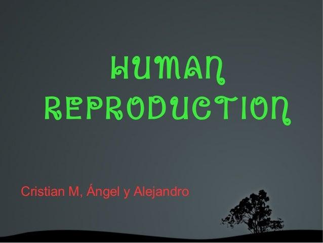 HUMAN REPRODUCTION Cristian M, Ángel y Alejandro