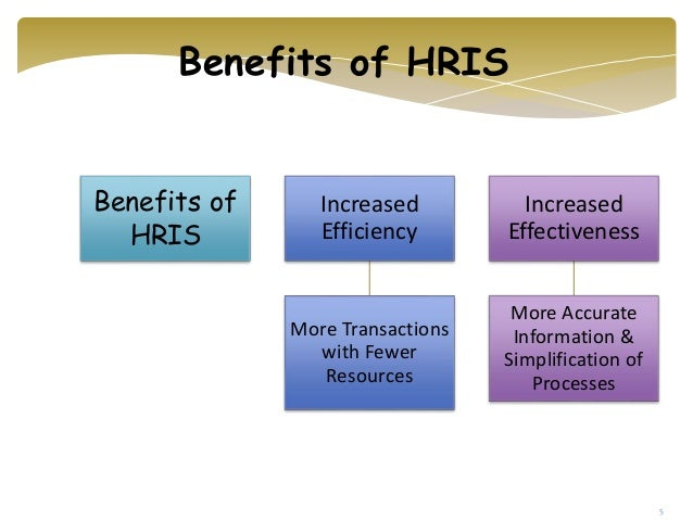 Human Resource Information System Accounting And Auditing