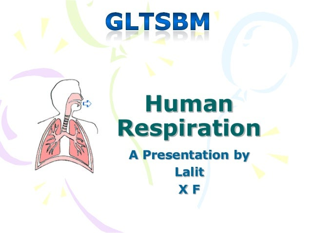 HumanRespirationA Presentation by      Lalit       XF