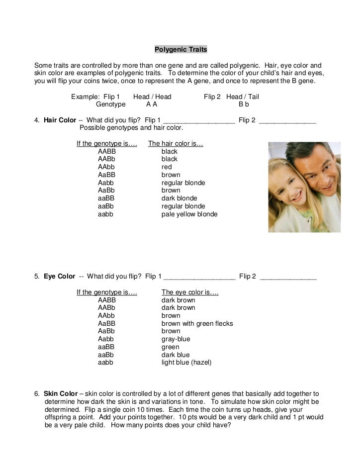 lab report human traits This means that for any single pair of characteristics you shouldn't copy-paste this genetic lab report sample to your paper because it will be considered.