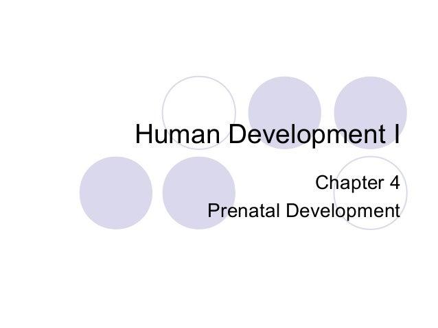 Human Development I Chapter 4 Prenatal Development
