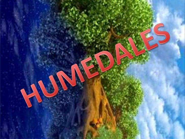HUMEDALES<br />