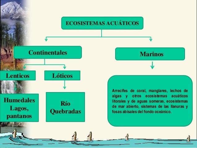 ECOSISTEMAS ACUÁTICOS       Continentales                           MarinosLenticos      Lóticos                          ...