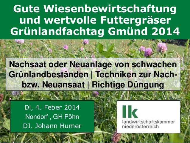 Gute Wiesenbewirtschaftung und wertvolle Futtergräser Grünlandfachtag Gmünd 2014 Nachsaat oder Neuanlage von schwachen Grü...