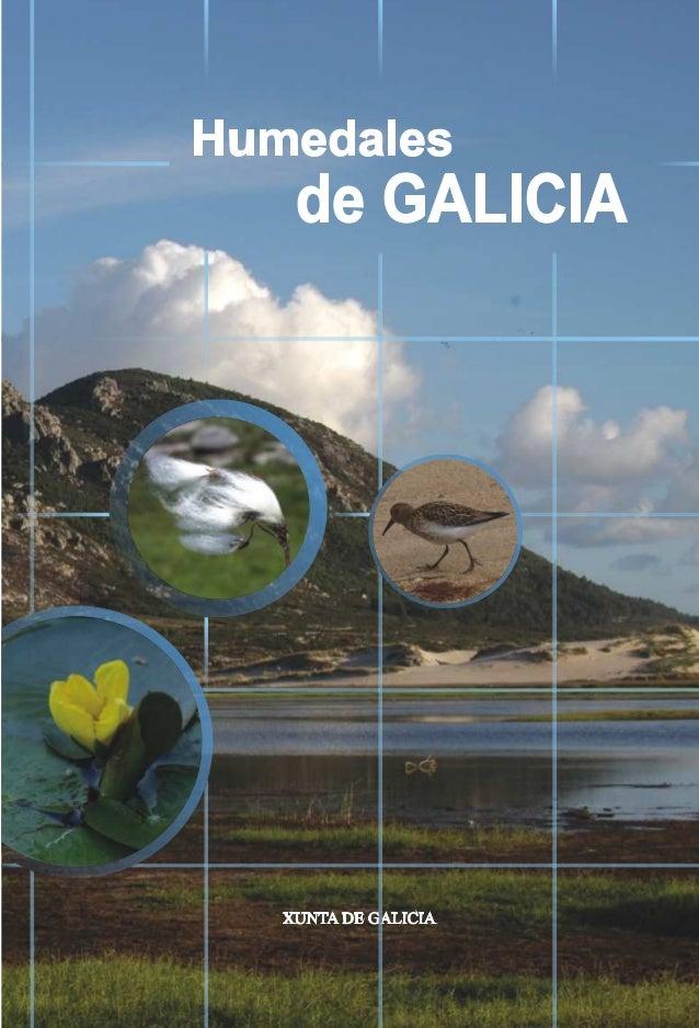 HUMEDALES DE GALICIA COORDINADORES: Francisco García-Bobadilla Prósper José Mª Lago García Carmen Juliani Aguado Antonio C...