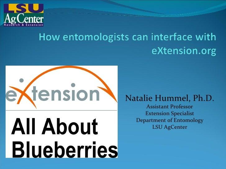 Natalie Hummel, Ph.D. Assistant Professor Extension Specialist Department of Entomology LSU AgCenter