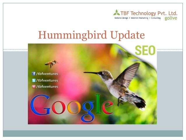Google Hummingbird SEO Tips Update