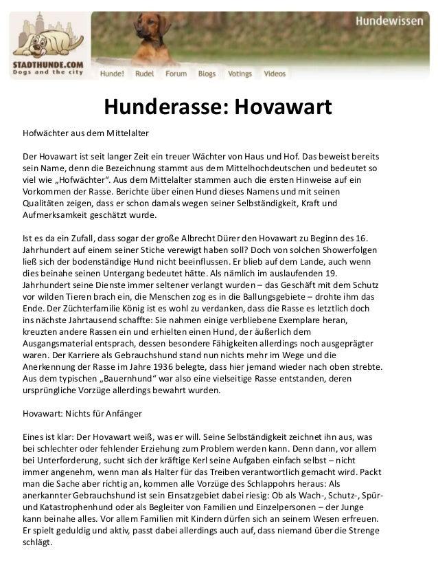 Hunderasse: Hovawart Hofwächter aus dem Mittelalter Der Hovawart ist seit langer Zeit ein treuer Wächter von Haus und Hof....