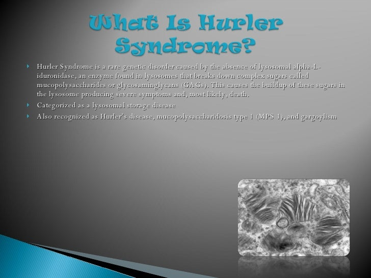 hurler syndrome disease The condition belongs to a group of diseases called attenuated mps i mps i h mps i s hurler syndrome scheie syndrome hurler-scheie syndrome.