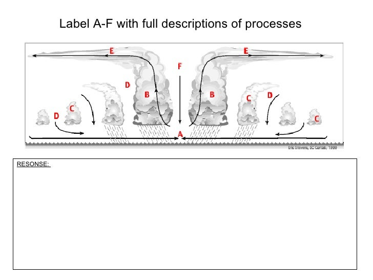 Label A-F with full descriptions of processes RESONSE: