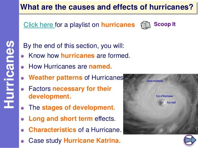 cause effect of hurricanes Hurricanes a hurricane is a type of cyclone a hurricane is an organized collection of thunderstorms that pumps in the air near the earth's surface and exhaust it out to the top.