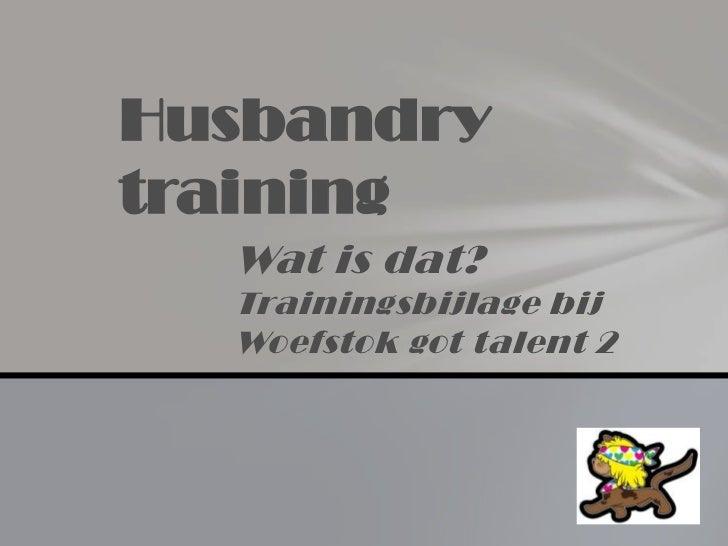 Husbandrytraining  Wat is dat?  Trainingsbijlage bij  Woefstok got talent 2