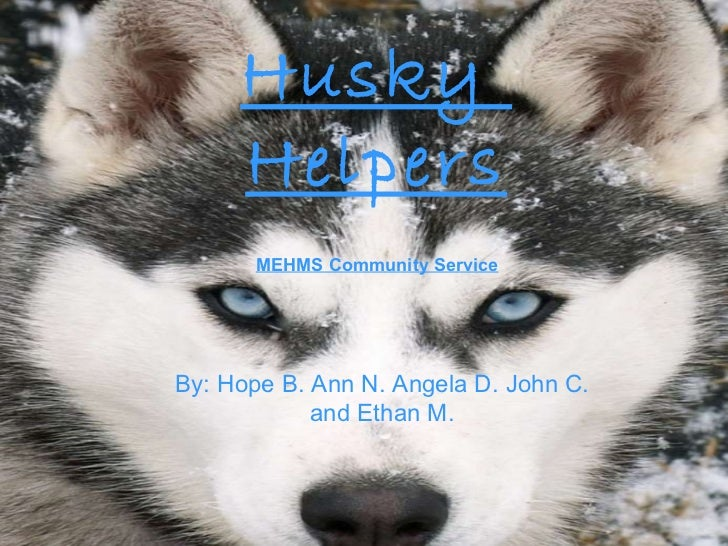 Husky  Helpers By: Hope B. Ann N. Angela D. John C. and Ethan M. MEHMS Community Service
