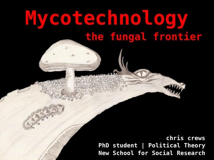 Hybrid worlds   fungi final - crews