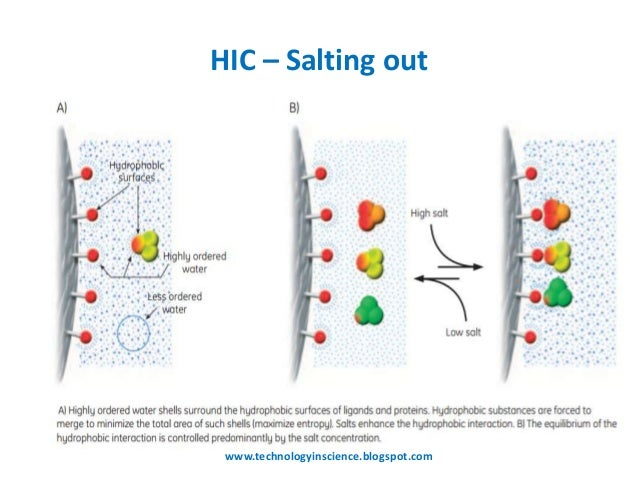 Hydrophobic interaction chromatography [HIC] Theory and Principle