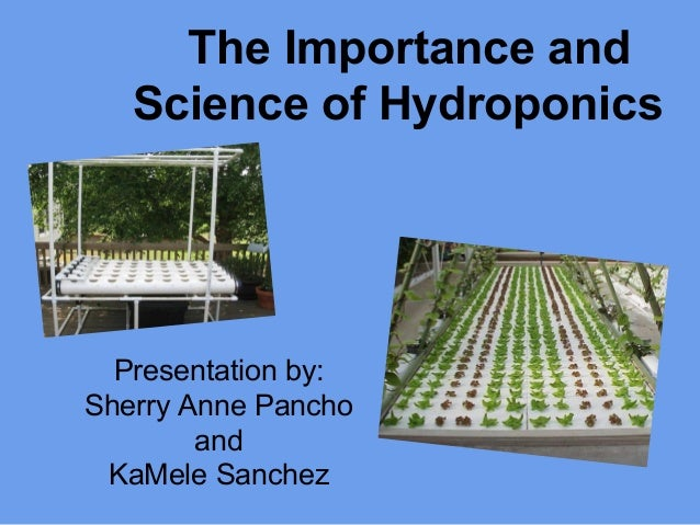 Hydroponics: Its Importance and Science