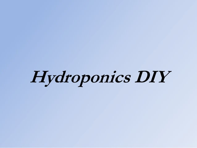 Hydroponics DIY