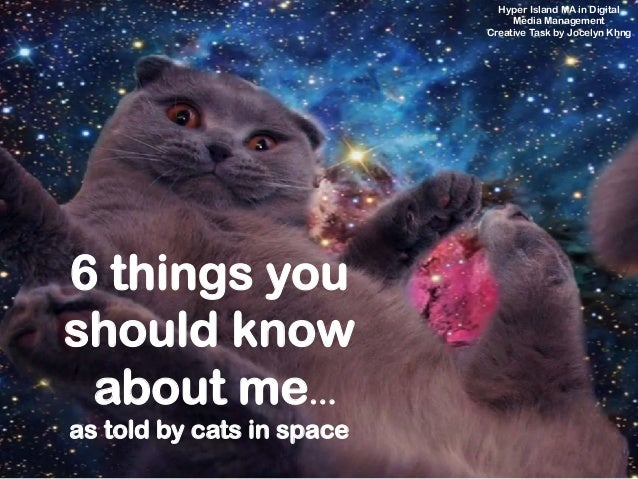 6 things you should know about me… as told by cats in space Hyper Island MA in Digital Media Management Creative Task by J...