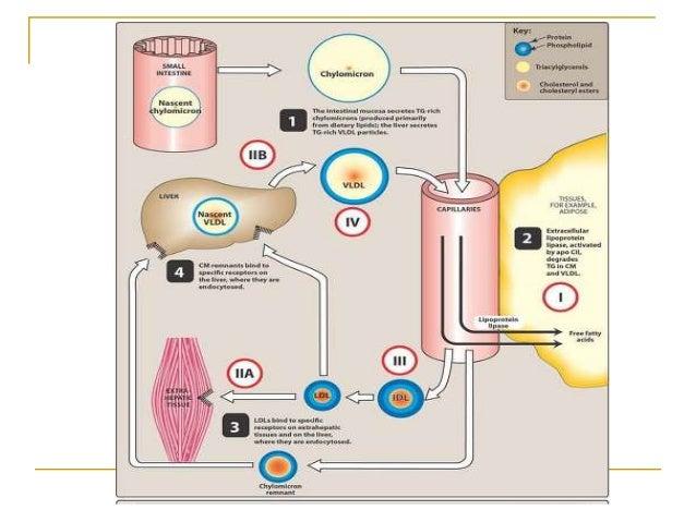 Gapeworm treatment ivermectin