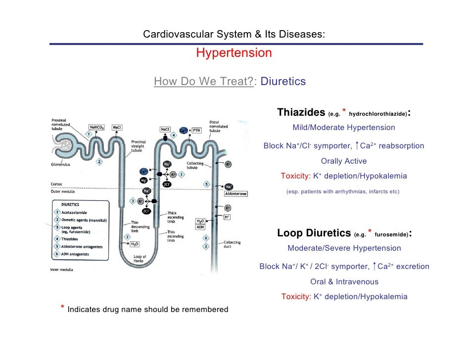How Does Lasix Work For Hypertension