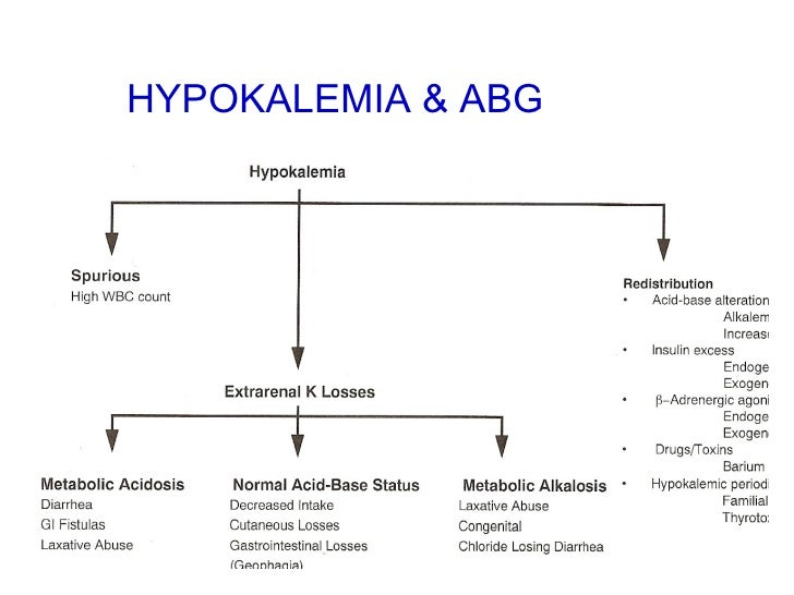 Hypokalemia on where are your pancreas located