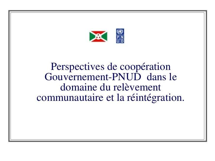 Perspectives de coopération Gouvernement-PNUD  dans le domaine du relèvement communautaire et la réintégration.<br />