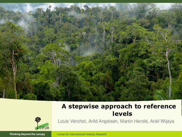 A stepwise approach to reference levels Louis Verchot, Arild Angelsen, Martin Herold, Arief Wijaya