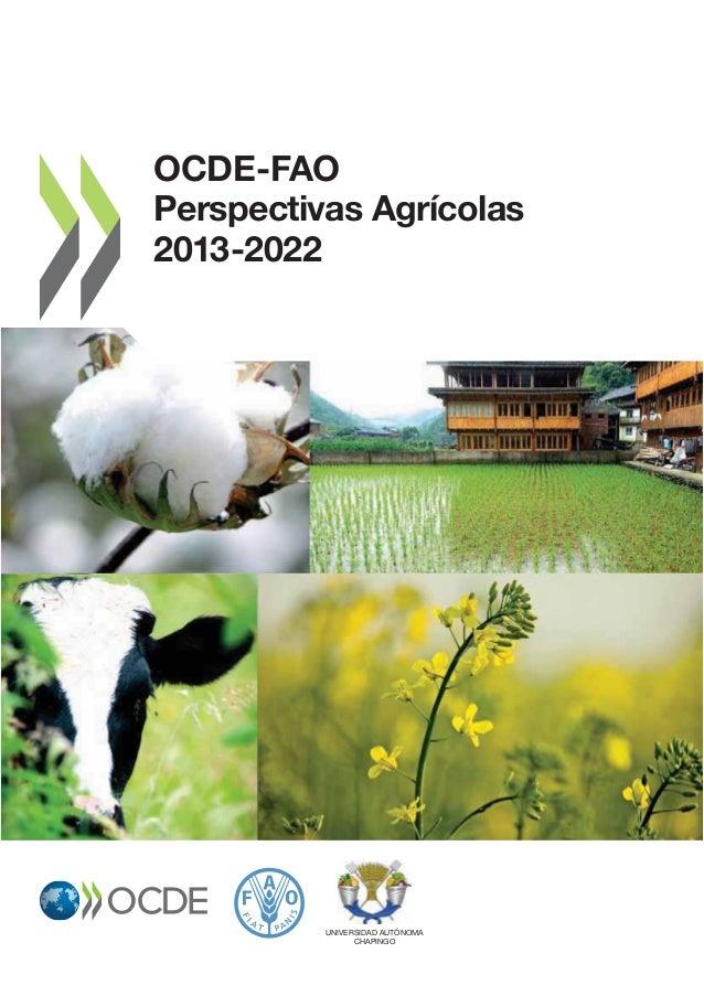 FAO - Perspectivas agricolas